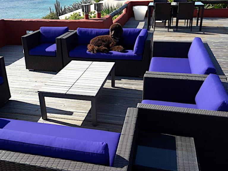 cushions-purple-services-phishphaktory-03
